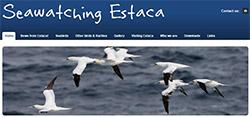seawatchingestaca.com